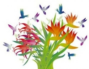 humming bird:flowers