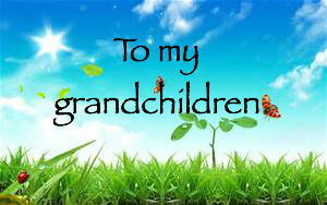 to my grandchildren